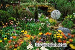 Виды садов