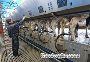 Разные конструкции животноводческих ферм.