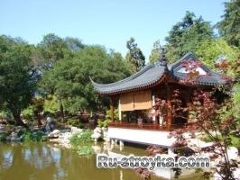 Китайский сад.