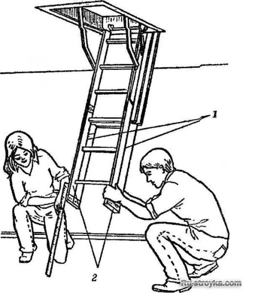 Складные и раздвежные лестницы.