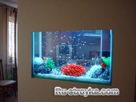 Правила размещения аквариумов в интерьере