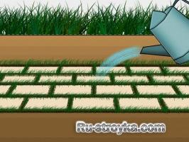 Брусчатка с травой